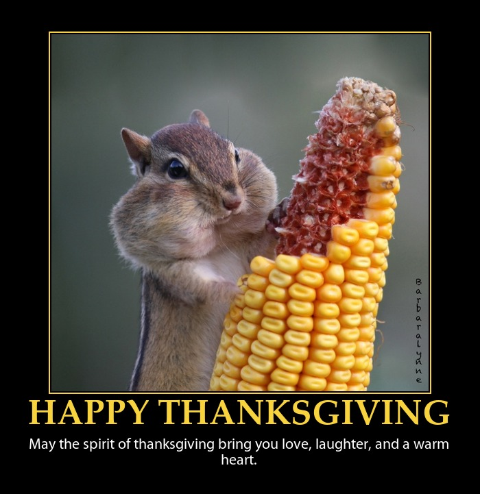 To All Of You… Happy Thanksgiving! - Rhys Ford